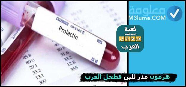 هرمون مدر للبن فطحل العرب