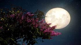 قصة خيالية عن القمر الحزين