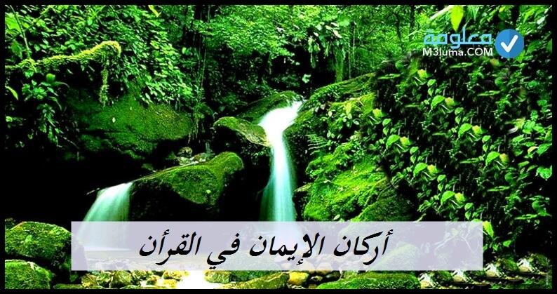 أركان الإيمان في القرآن | معلومة